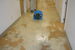 686887-06water-flood-damage-columbia-sc