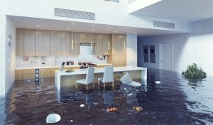 water damage irmo sc