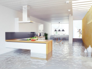 water damage cleanup in irmo, water damage restoration irmo, water damage repair irmo,