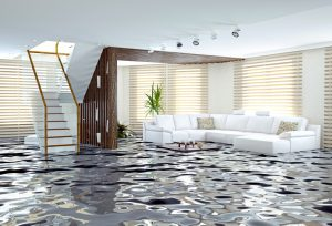 water damage cleanup irmo, water damage irmo, water removal irmo